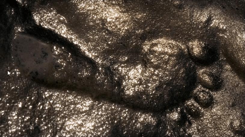 Odcisk z Zapaty - niezwykłe znalezisko czy zwyczajne oszustwo